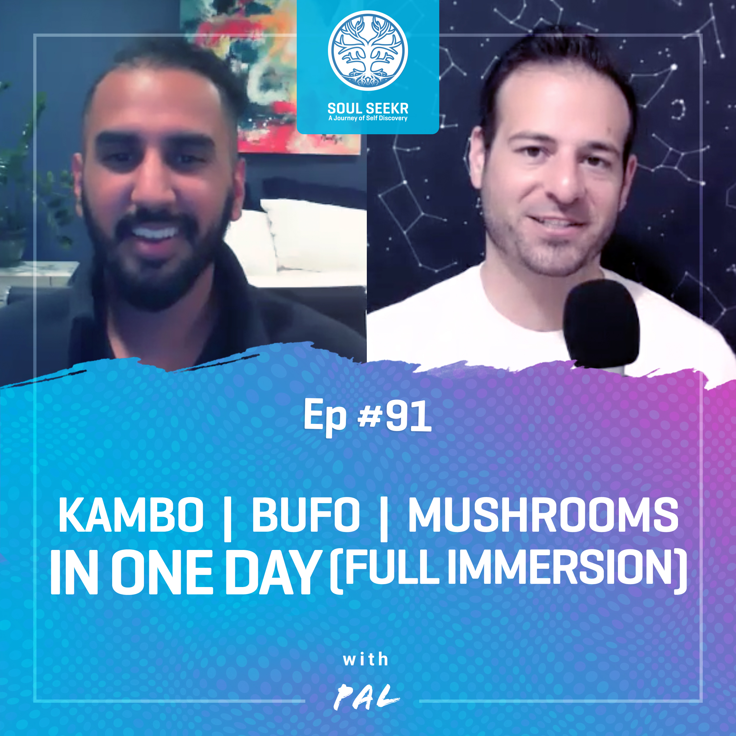 #91: Kambo   Bufo   Mushrooms in ONE DAY (Full Immersion) with Pal